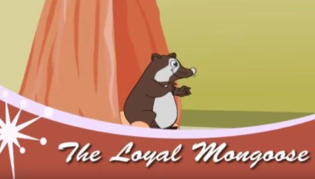 The Loyal Mongoose